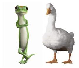 geico s gecko or the aflac duck how your favorite mascot can help